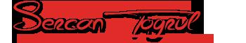 Sercan Toğrul – Kişisel Java  Notları – Türkçe Java Dersleri